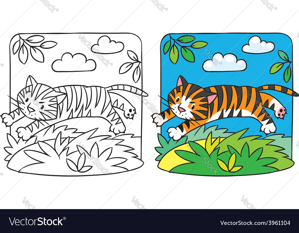 Little tiger coloring book vector