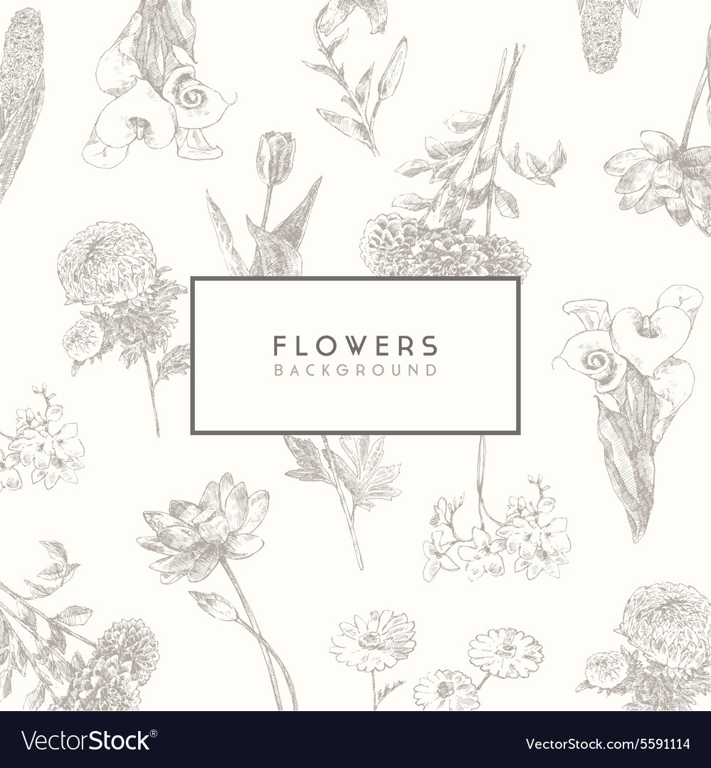 Trendy collection hand drawn flowers floral set vector
