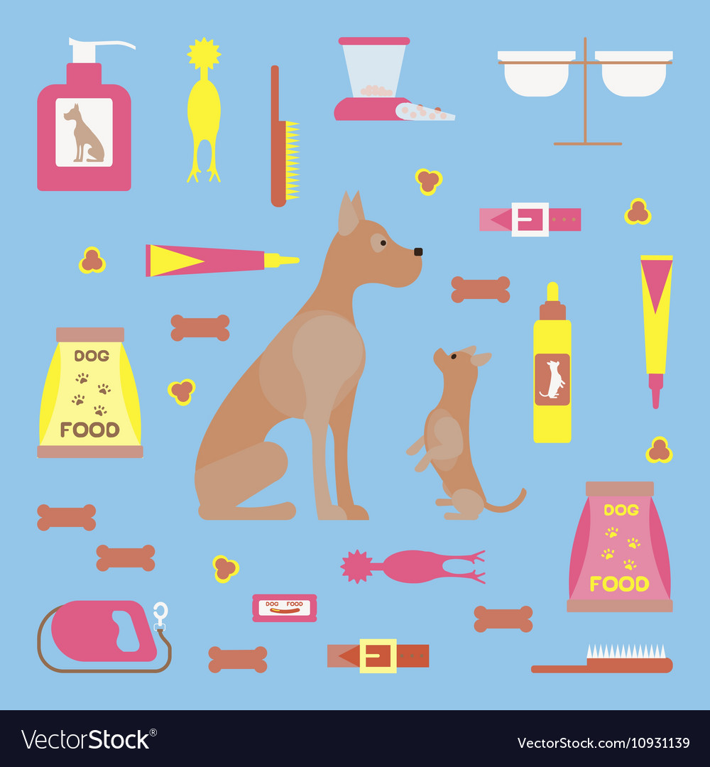 Infographic elements with dog care vector