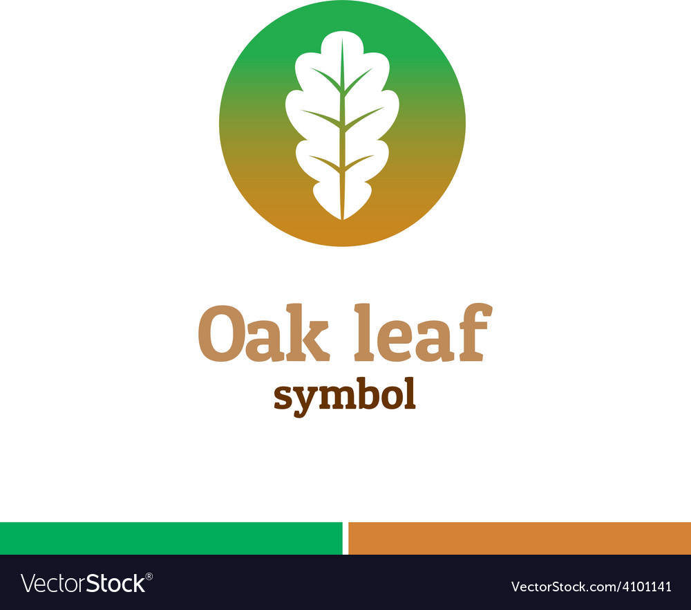 Oak leaf symbol logo nature theme template vector