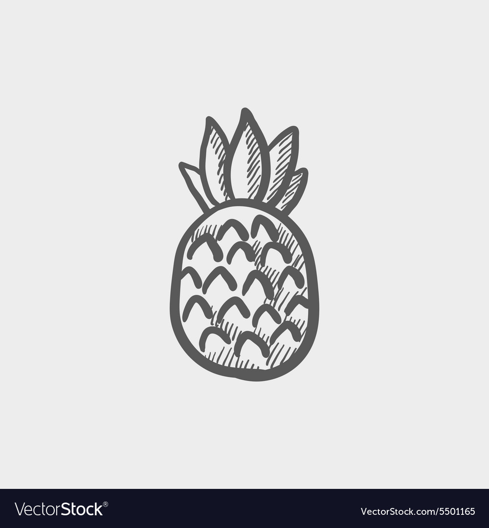 Pineapple sketch icon vector