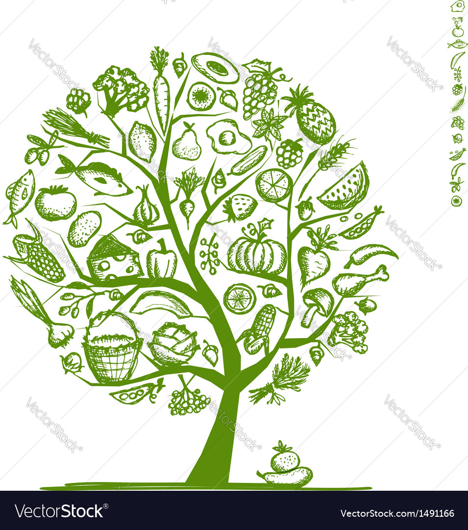 Healthy food tree sketch for your design vector