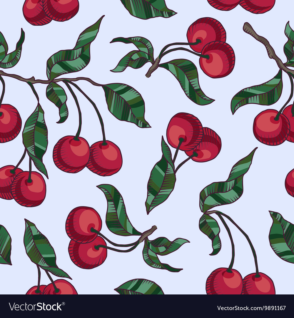 Cherry branch with cherries and leaves vector