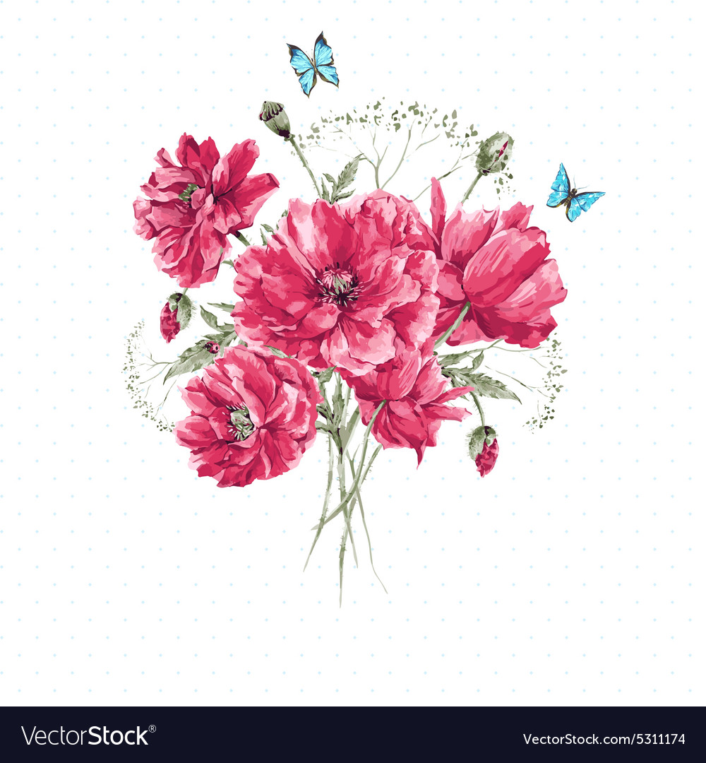 Delicate vintage watercolor bouquet of red poppies vector