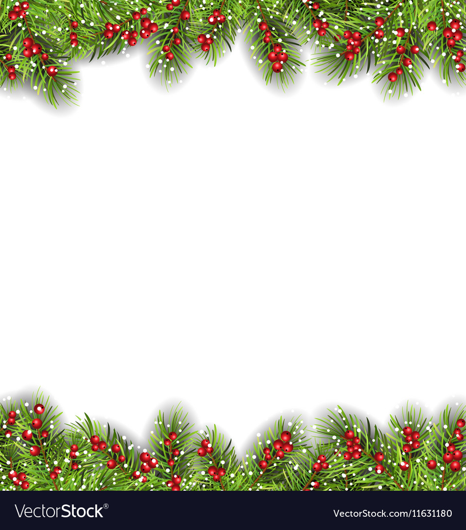 Holiday frame with fir branches and holly berries vector