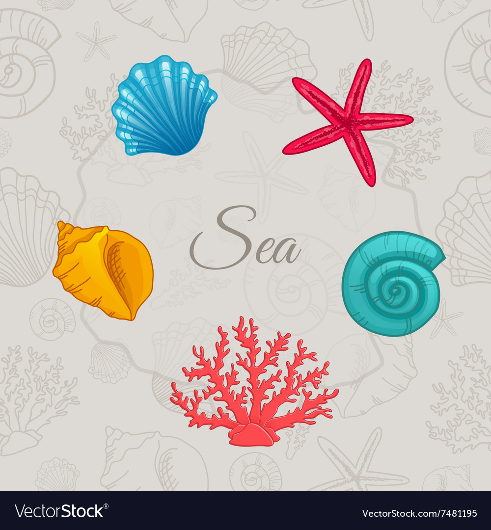 Set of colorful seashells with seamless pattern vector