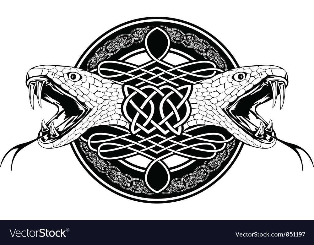 Snake with celtic pattern vector
