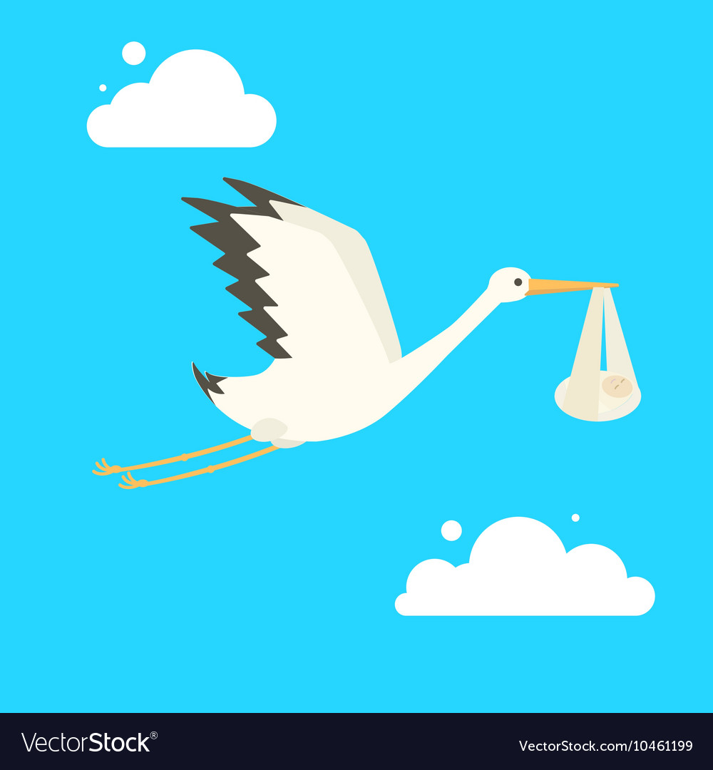 Stork delivering baby cartoon vector