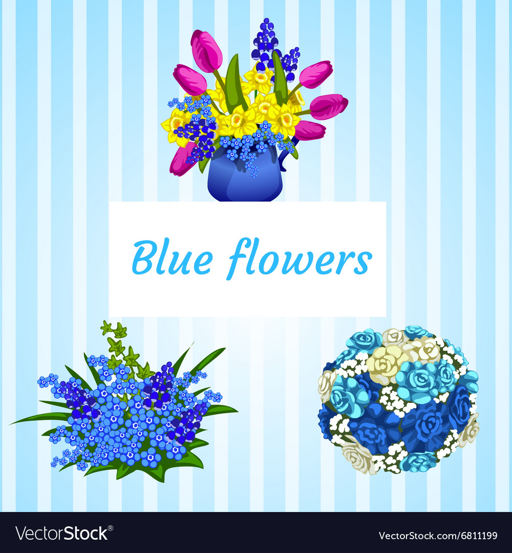 Three bouquets in blue and colored flowers vector