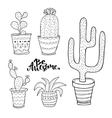Hand drawn succulent and cactus set Doodle plants vector image