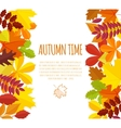 banner with autumn foliage vector image