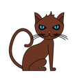 color image cartoon front view cat animal sitting vector image