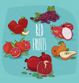 set of isolated food products red fruits vector image