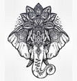decorative elephant with lotus mandala crown vector image