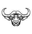 buffalo head icon on white background vector image