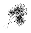 Dandelion flowers for your design vector image