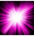 Purple star burst background vector image vector image