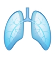 Human Health Lungs and Bronchi vector image