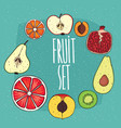 set of isolated fruits in cross sections vector image