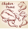 Chicken meat set hand drawn llustration vector image