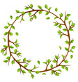 summer frame with branches of tree and green vector image vector image