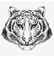 tiger drawn vector image vector image