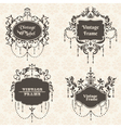 Set Vintage Frame collection with FLower elements vector image