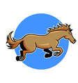 Jump Horse vector image