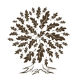 Brown oak tree silhouette vector image