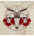 goat skull on the background with occult symbols vector image