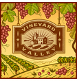 Vineyard Valley vector image