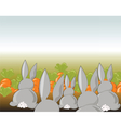 Bunny rabbits in a field of carrots vector image