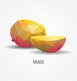 bright healthy mango fruit concept vector image