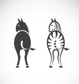 images of horse and zebra vector image
