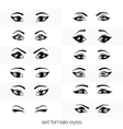set of views of a female eye vector image