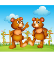 Happy faces of two bears vector image vector image