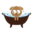 cute dog character bathing isolated icon design vector image