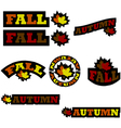 Fall icons vector image