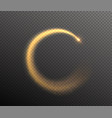 sparkle glitter round tail glow dust wave in the vector image