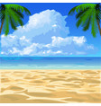 tropical ocean beach vector image