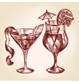 Cocktail set hand drawn llustration vector image