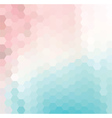 Pink and Blue Hexagonal Grid vector image vector image