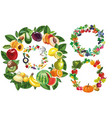 fruits vegetables food and berries frames vector image