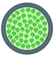 road trees circle vector image