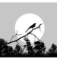 bird on a branch vector image vector image