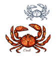 Crab isolated sketch icon vector image