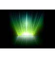 flare green mirror vector image vector image