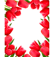 Red fresh spring flowers background vector image