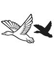 mallard duck flying vector image