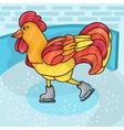 Rooster bird skate on skating ring vector image